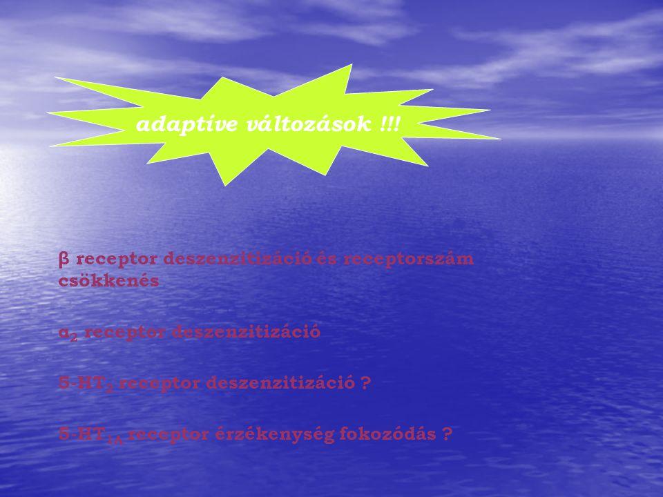 adaptíve változások !!! β receptor deszenzitizáció és receptorszám csökkenés. α2 receptor deszenzitizáció.