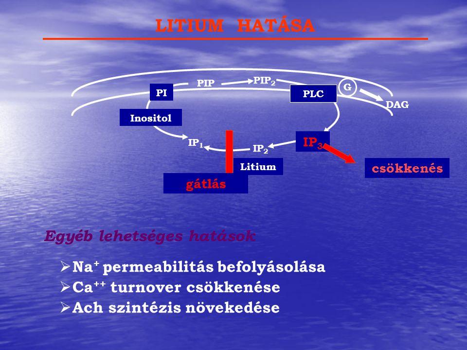 LITIUM HATÁSA Egyéb lehetséges hatások Na+ permeabilitás befolyásolása