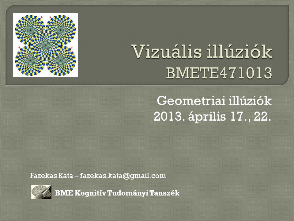 Vizuális illúziók BMETE471013