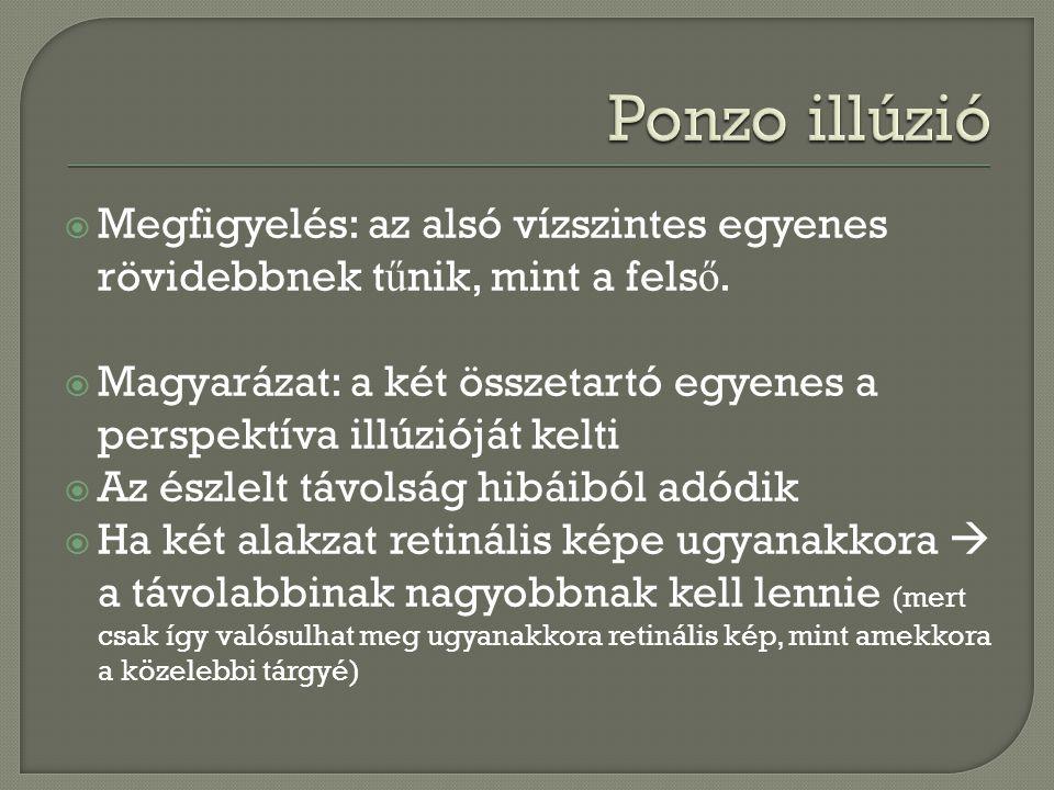 Ponzo illúzió Megfigyelés: az alsó vízszintes egyenes rövidebbnek tűnik, mint a felső.