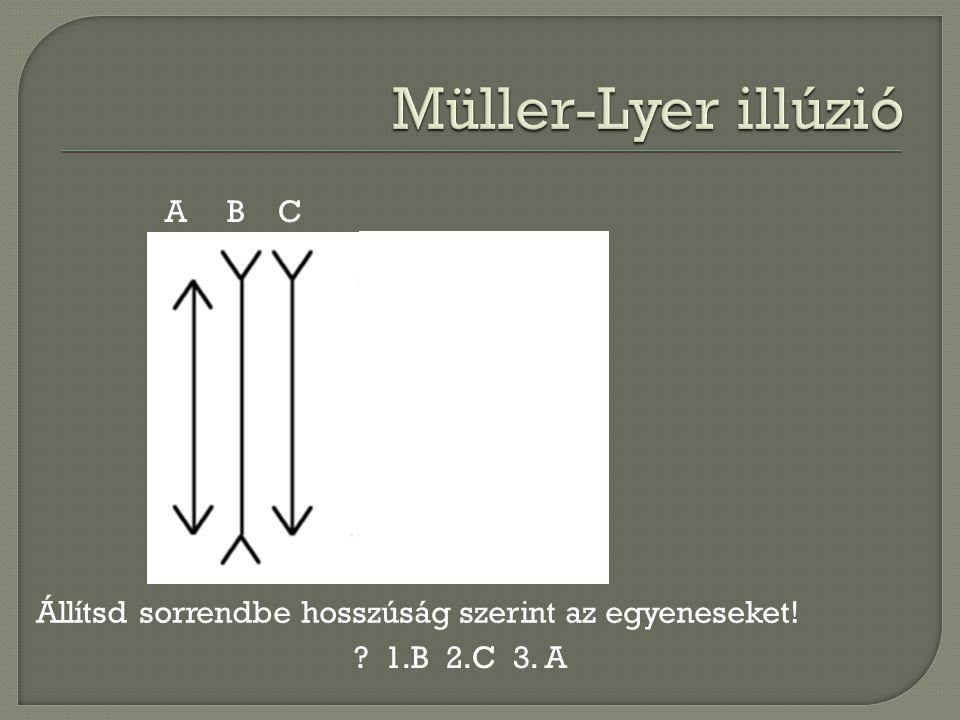 Müller-Lyer illúzió A B C
