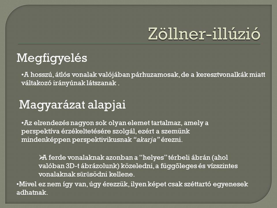 Zöllner-illúzió Megfigyelés Magyarázat alapjai
