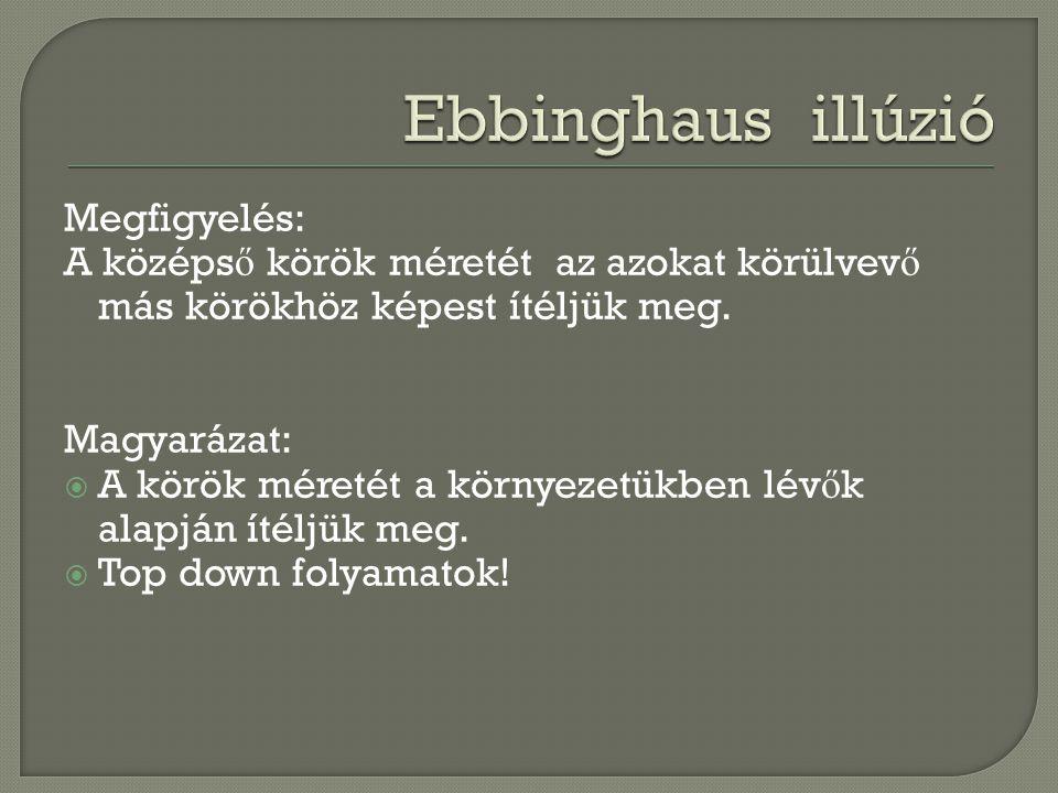 Ebbinghaus illúzió Megfigyelés: