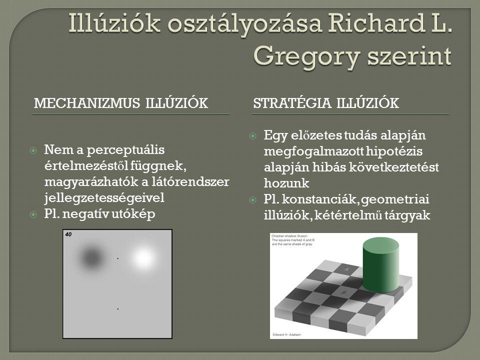 Illúziók osztályozása Richard L. Gregory szerint
