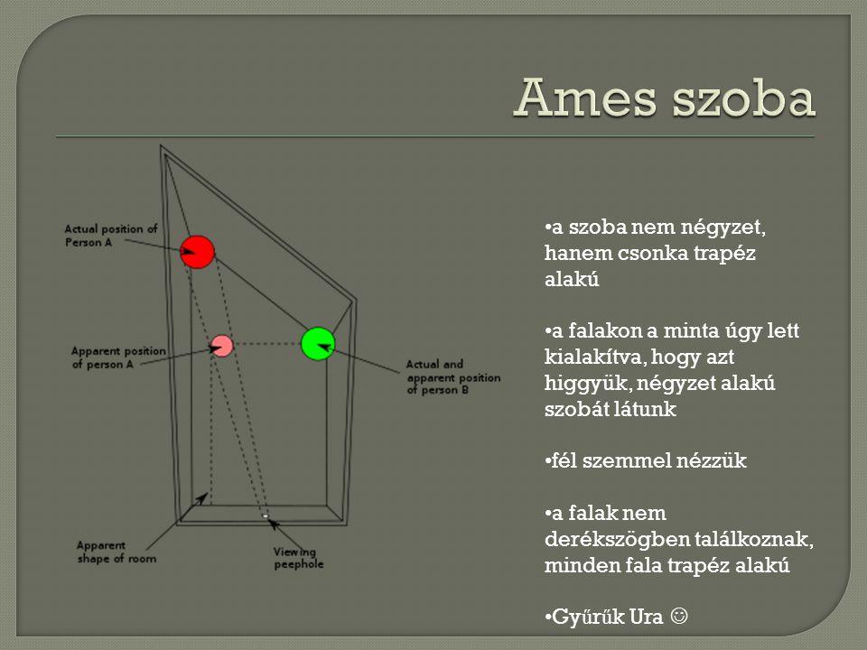 Ames szoba a szoba nem négyzet, hanem csonka trapéz alakú