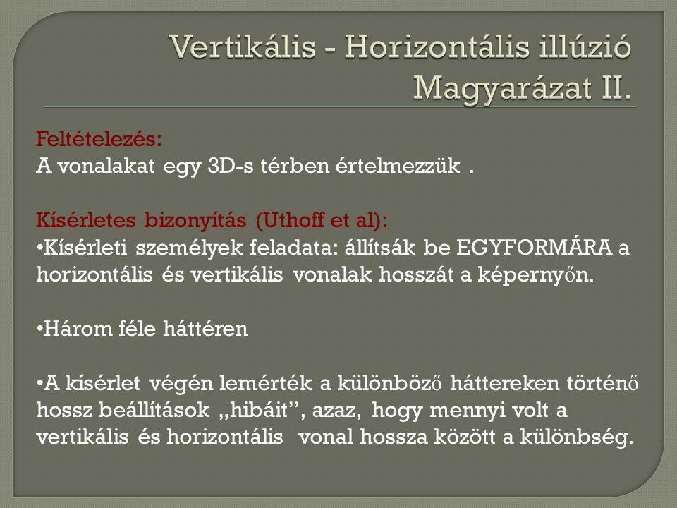 Vertikális - Horizontális illúzió Magyarázat II.