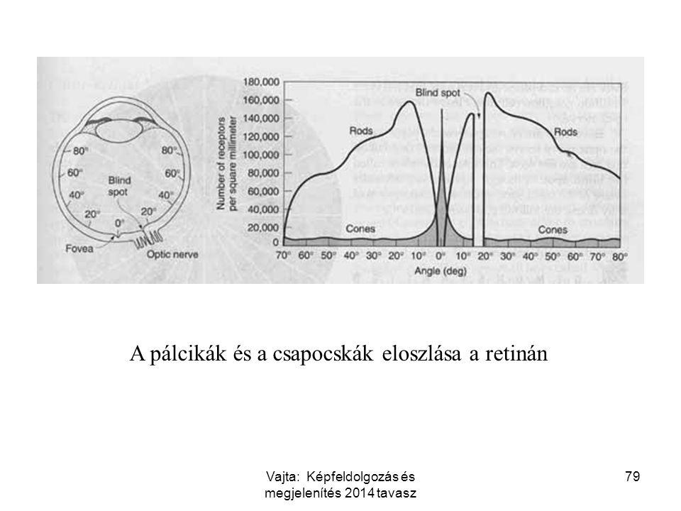 A pálcikák és a csapocskák eloszlása a retinán