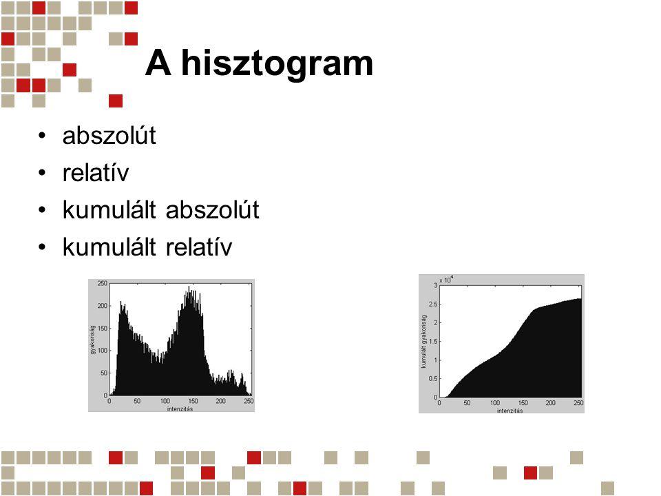 A hisztogram abszolút relatív kumulált abszolút kumulált relatív