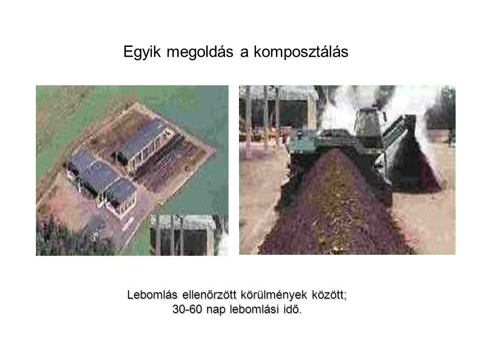 Egyik megoldás a komposztálás