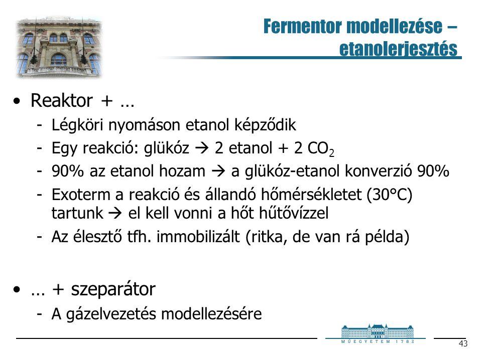 Fermentor modellezése – etanolerjesztés