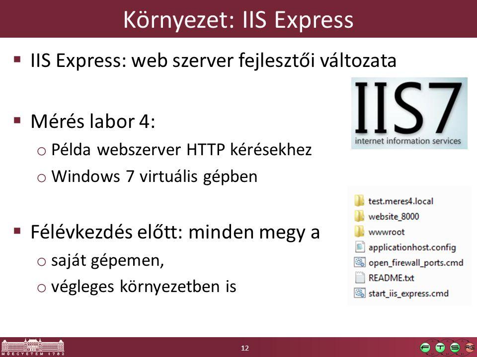 Környezet: IIS Express