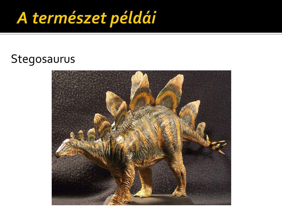 A természet példái Stegosaurus