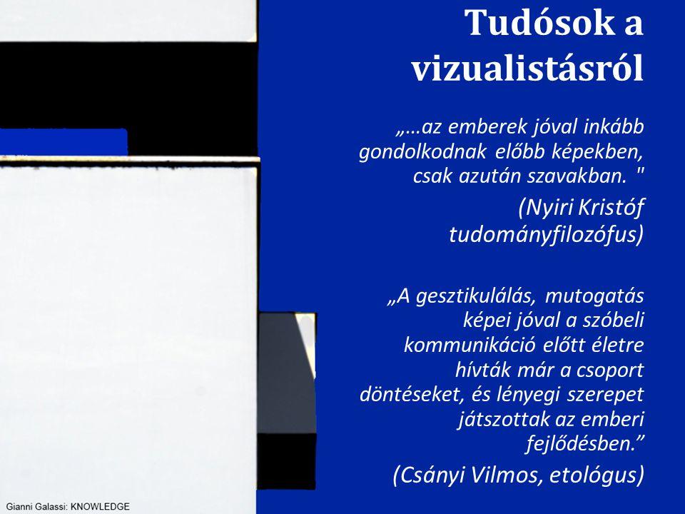 Tudósok a vizualistásról