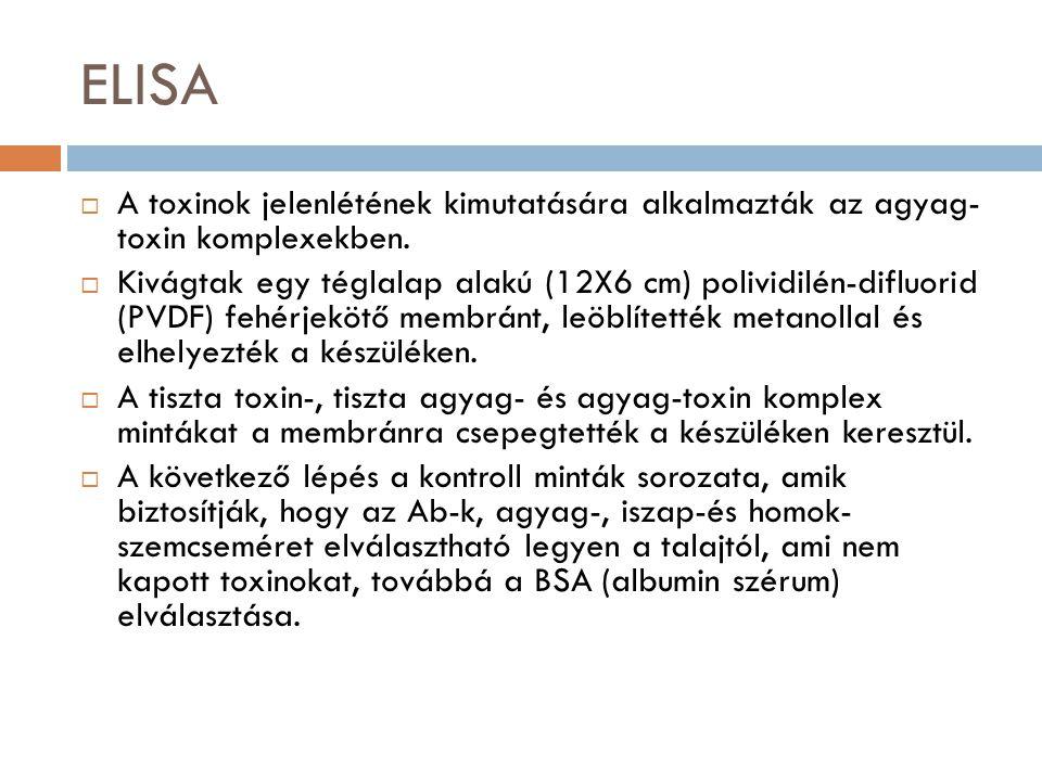 ELISA A toxinok jelenlétének kimutatására alkalmazták az agyag- toxin komplexekben.