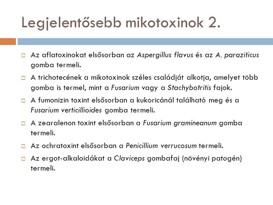 Legjelentősebb mikotoxinok 2.