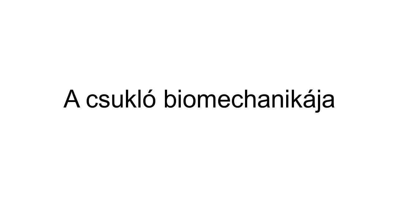 A csukló biomechanikája