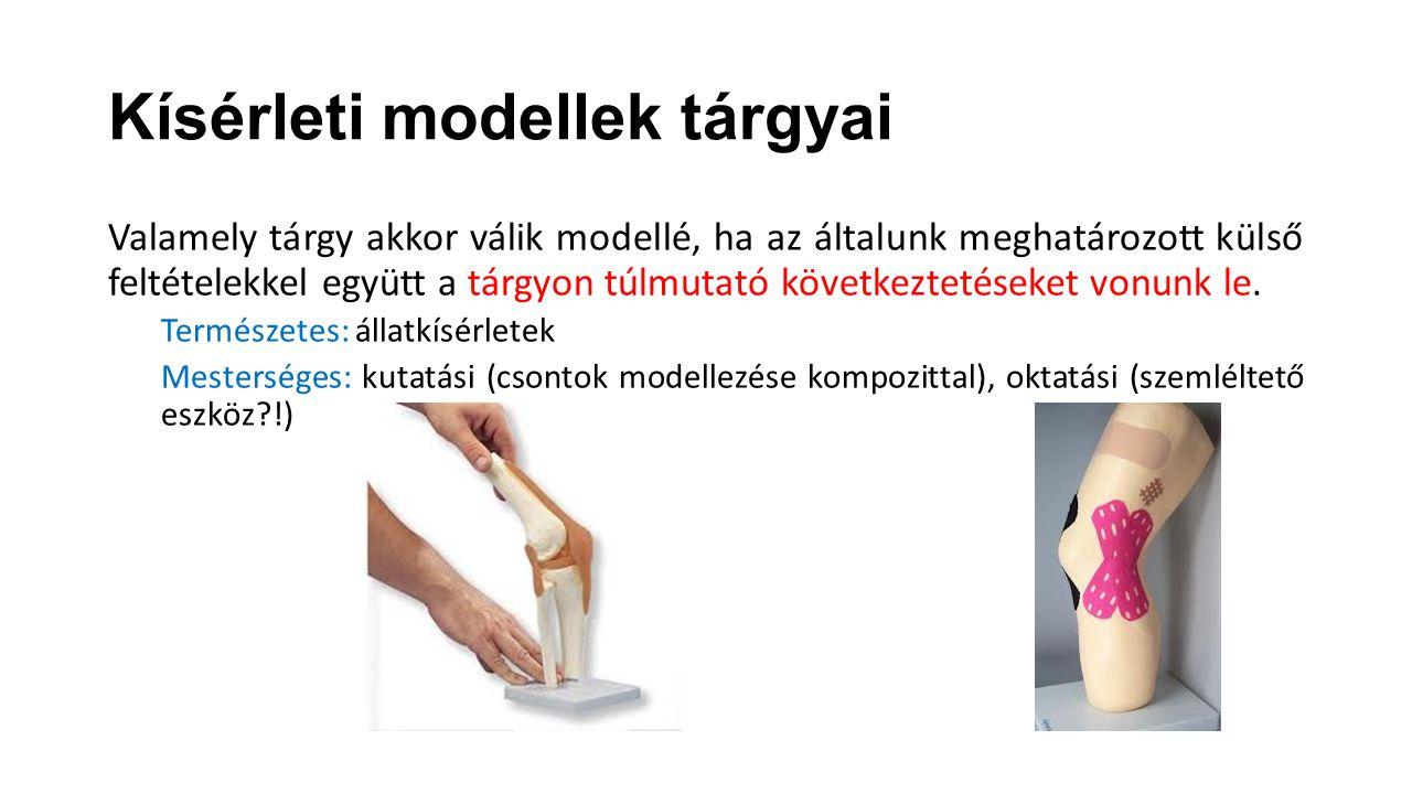 Kísérleti modellek tárgyai