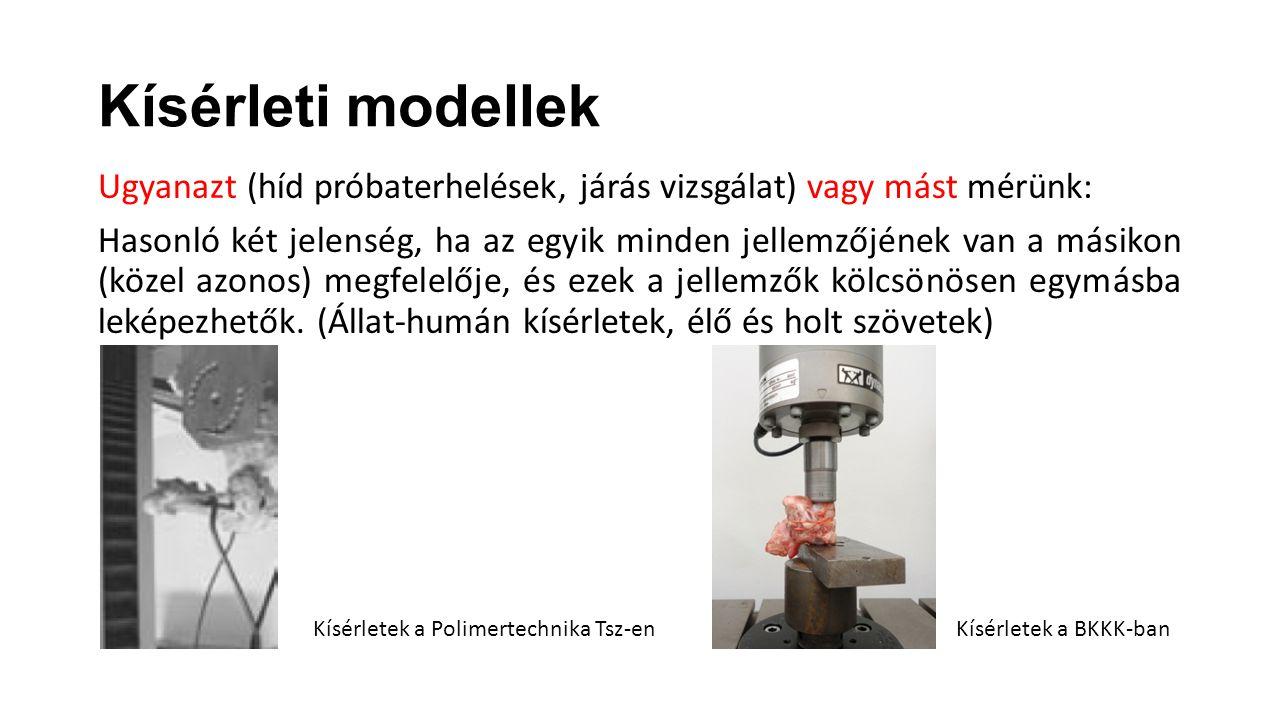 Kísérleti modellek