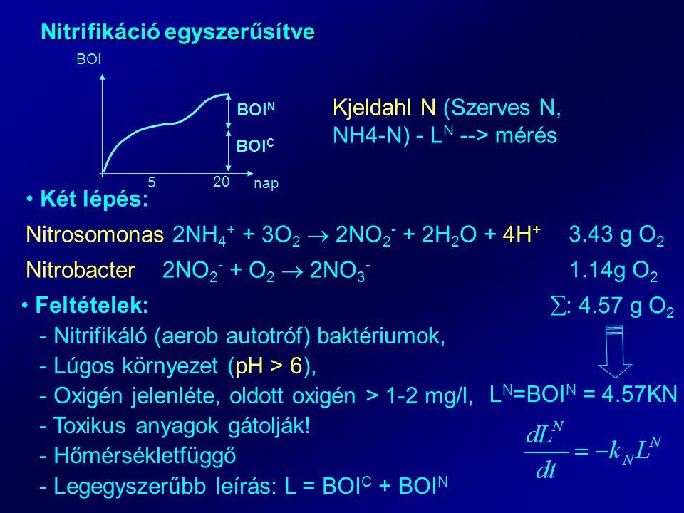 Nitrifikáció egyszerűsítve