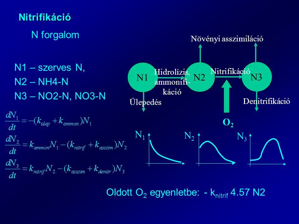 Hidrolízis, ammonifi-káció