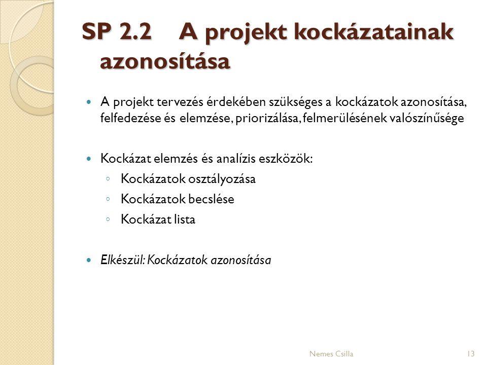 SP 2.2 A projekt kockázatainak azonosítása