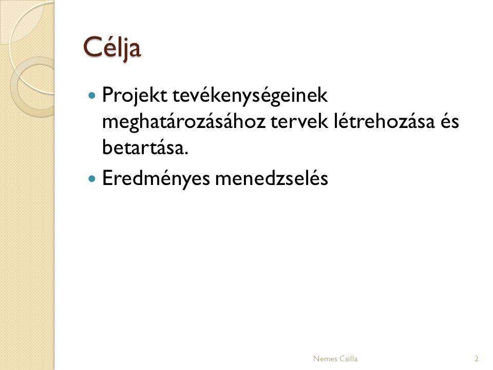 Célja Projekt tevékenységeinek meghatározásához tervek létrehozása és betartása. Eredményes menedzselés.