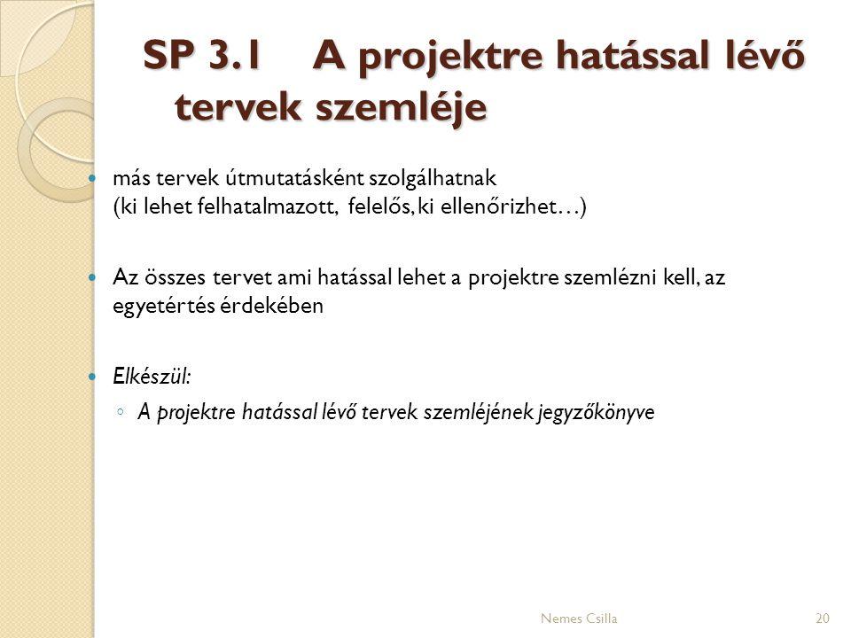 SP 3.1 A projektre hatással lévő tervek szemléje