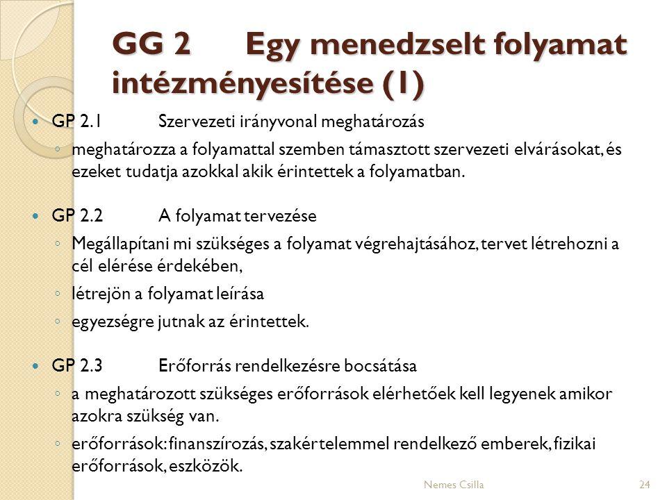 GG 2 Egy menedzselt folyamat intézményesítése (1)