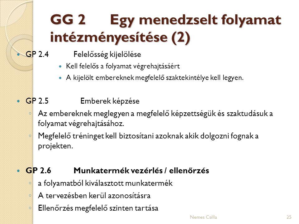 GG 2 Egy menedzselt folyamat intézményesítése (2)