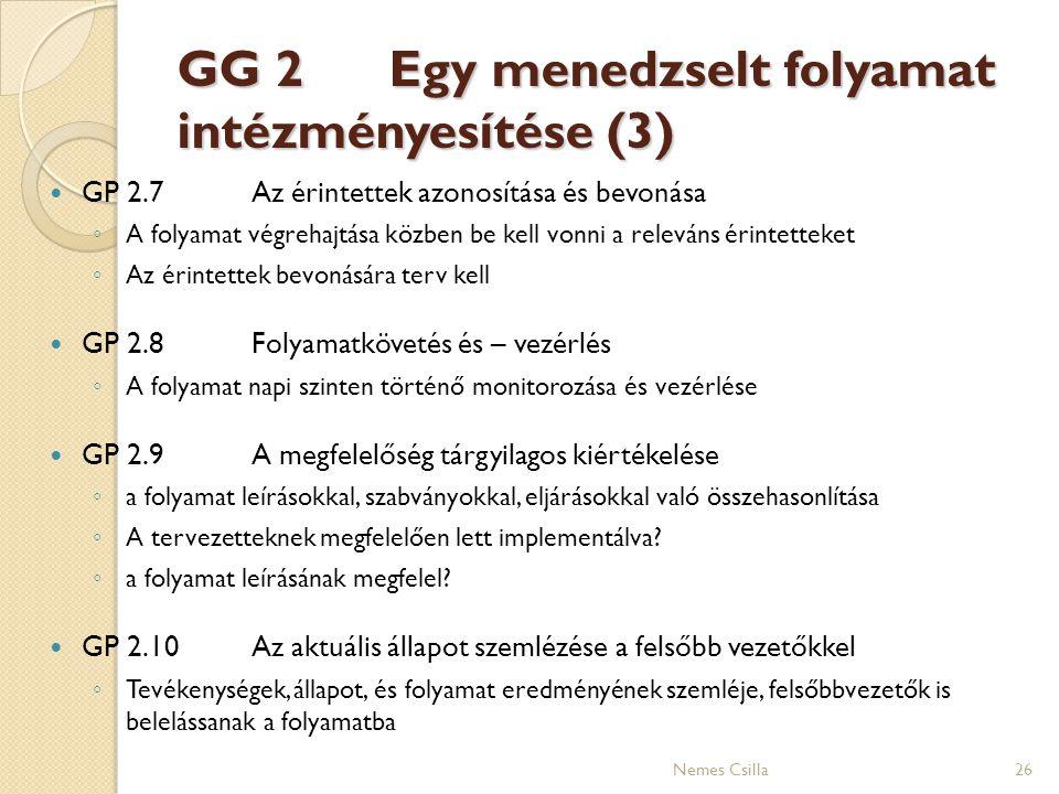 GG 2 Egy menedzselt folyamat intézményesítése (3)
