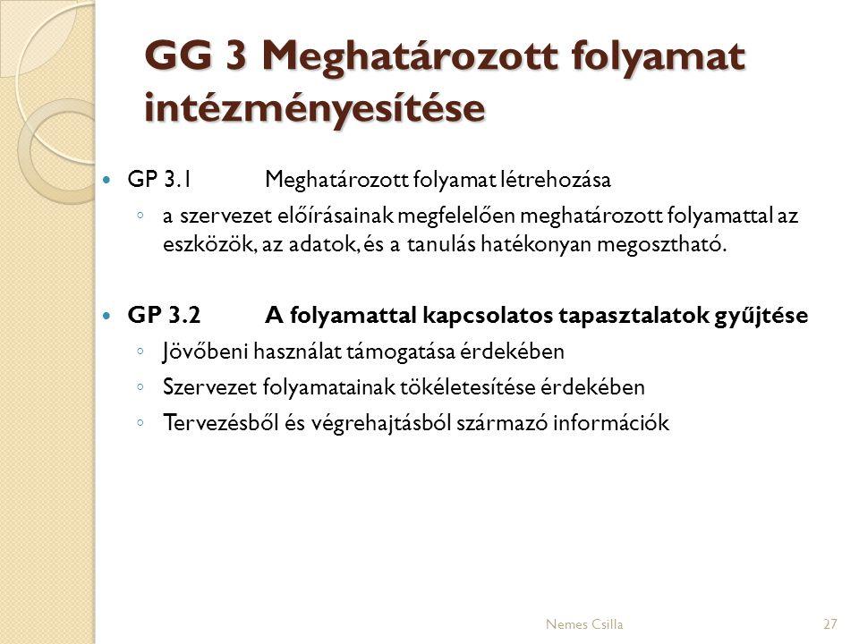 GG 3 Meghatározott folyamat intézményesítése