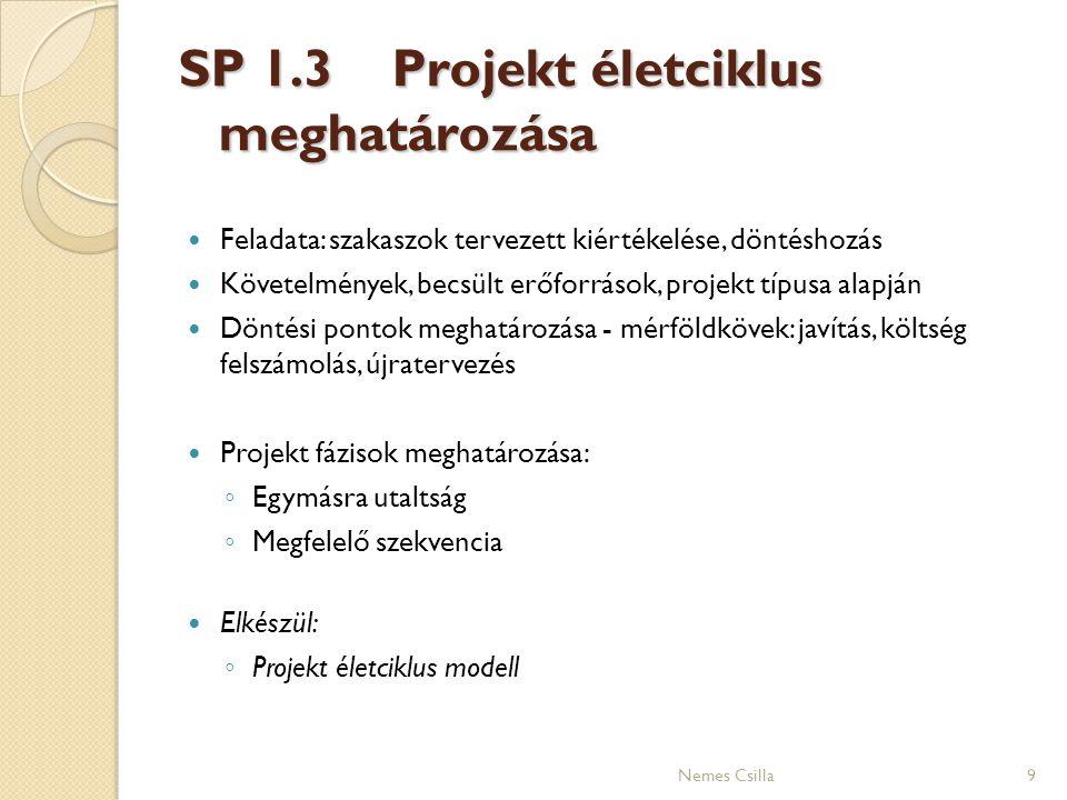 SP 1.3 Projekt életciklus meghatározása