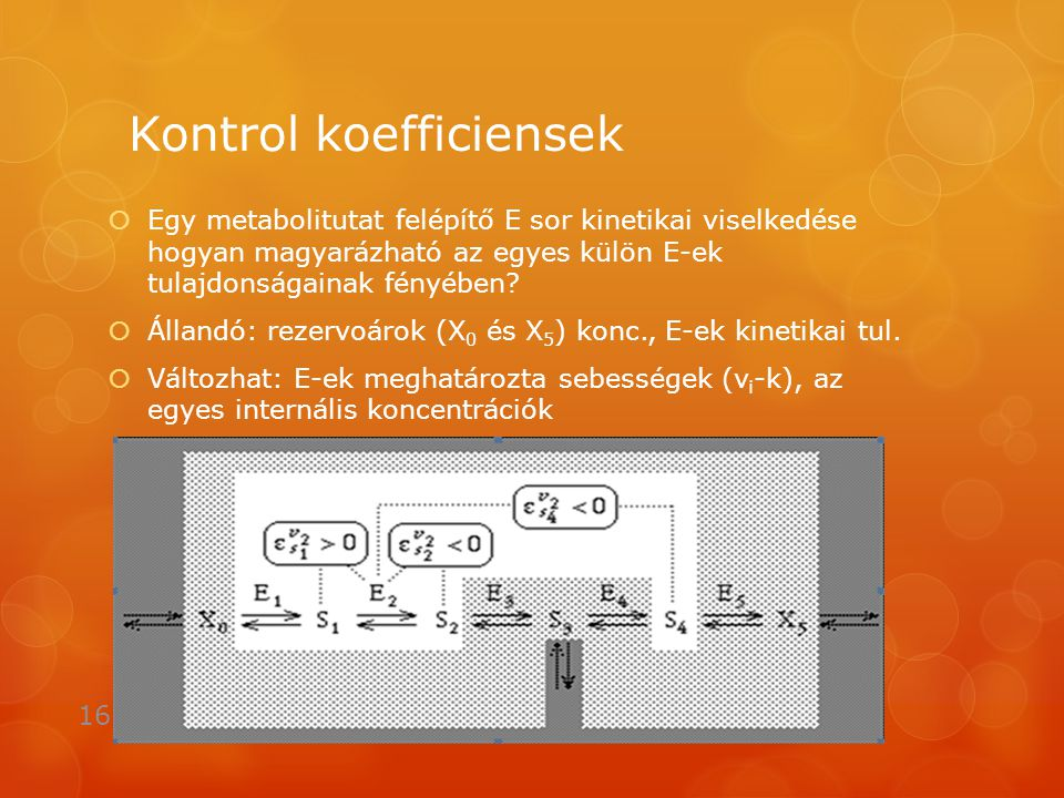 Kontrol koefficiensek