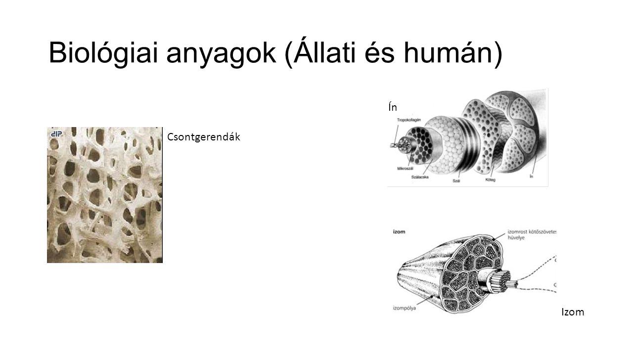 Biológiai anyagok (Állati és humán)