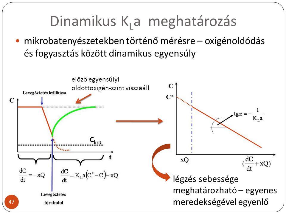 Dinamikus KLa meghatározás