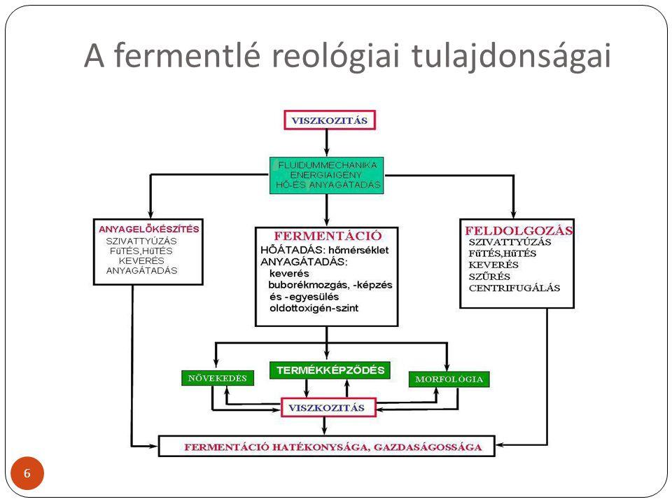 A fermentlé reológiai tulajdonságai