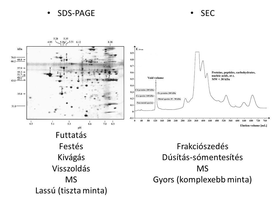 Dúsítás-sómentesítés MS Gyors (komplexebb minta)