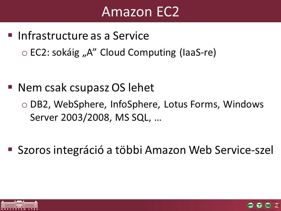 Amazon EC2 Infrastructure as a Service Nem csak csupasz OS lehet