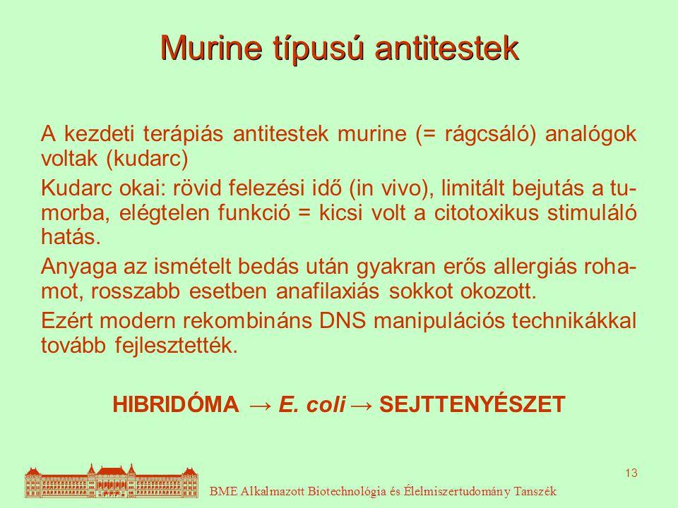 Murine típusú antitestek