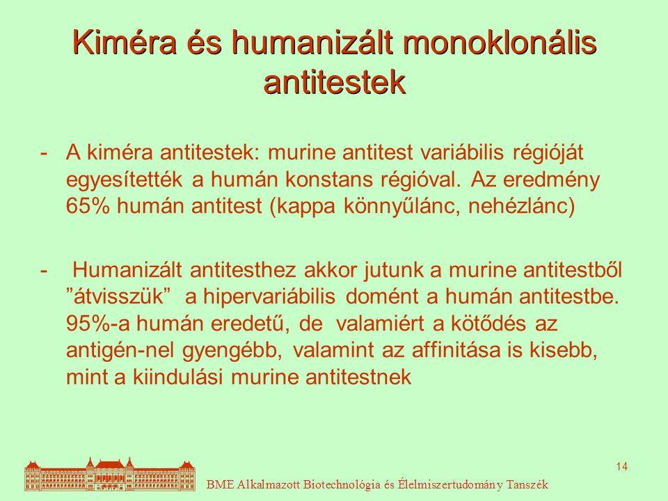 Kiméra és humanizált monoklonális antitestek