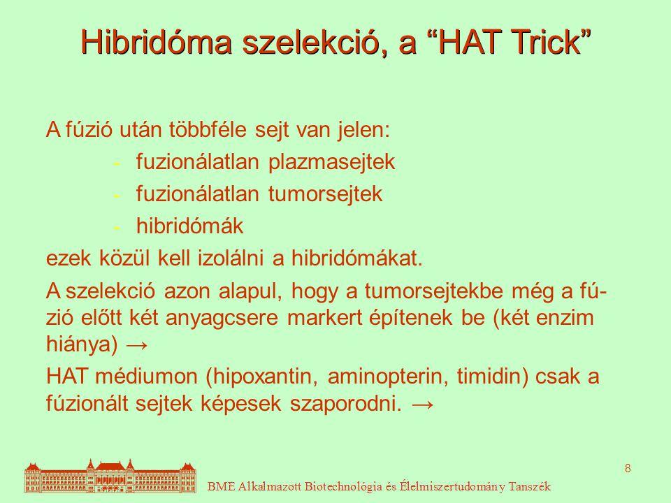 Hibridóma szelekció, a HAT Trick