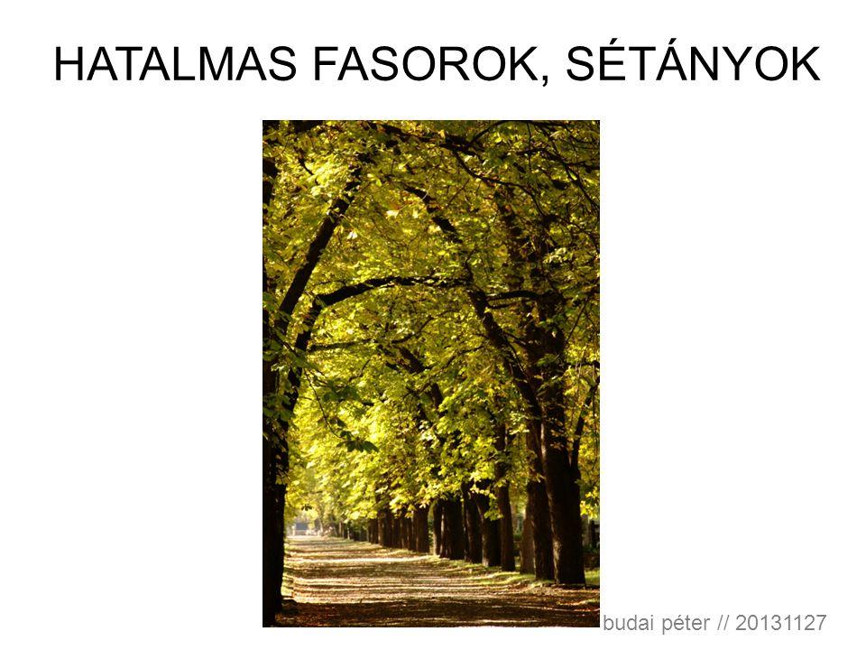 HATALMAS FASOROK, SÉTÁNYOK