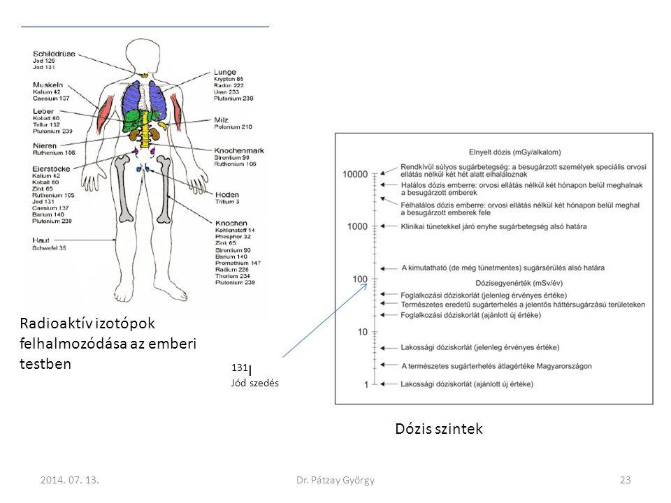 Radioaktív izotópok felhalmozódása az emberi testben