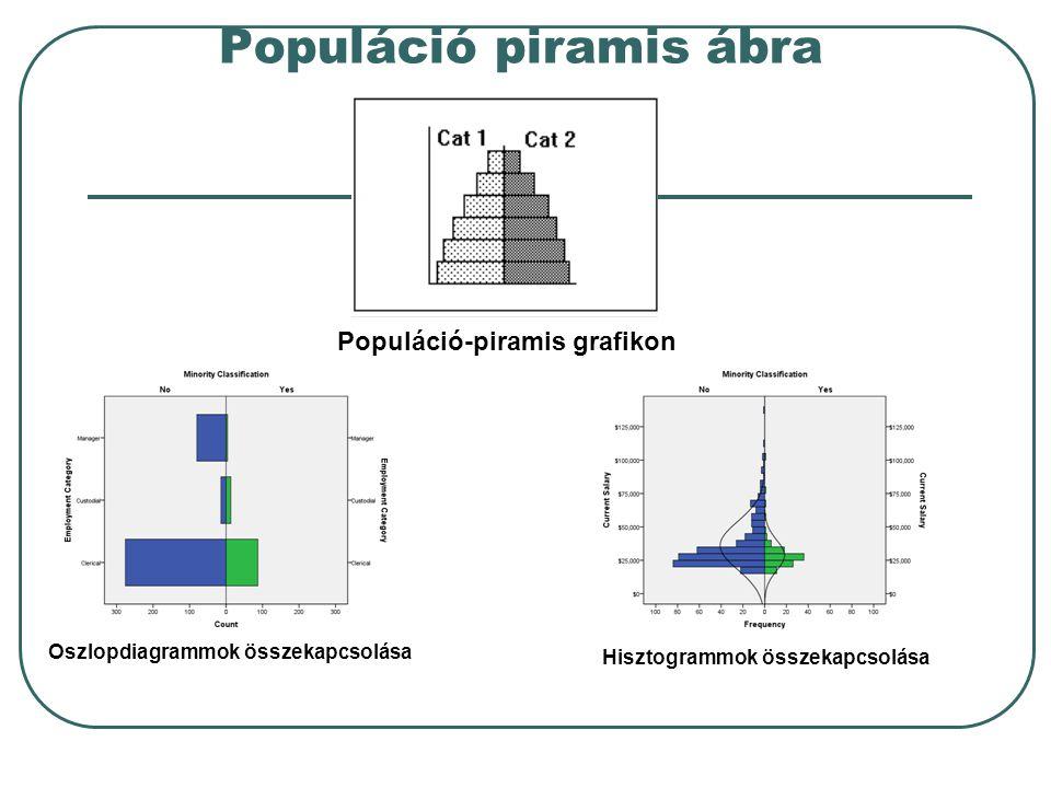 Populáció piramis ábra