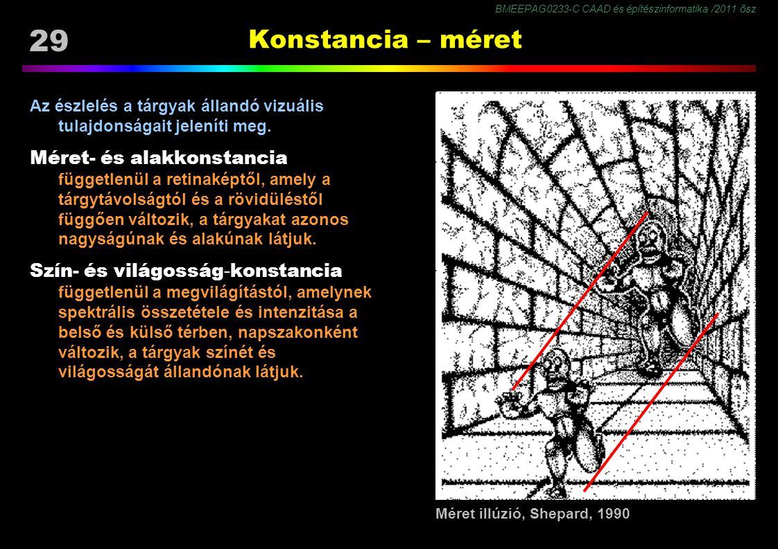 Konstancia – méret Méret- és alakkonstancia