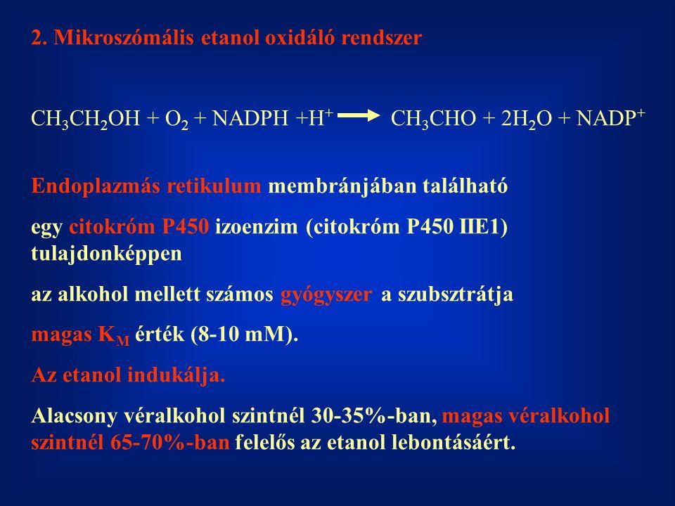 2. Mikroszómális etanol oxidáló rendszer