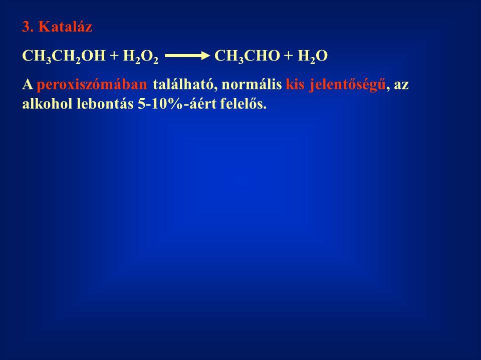 3. Kataláz CH3CH2OH + H2O2 CH3CHO + H2O.