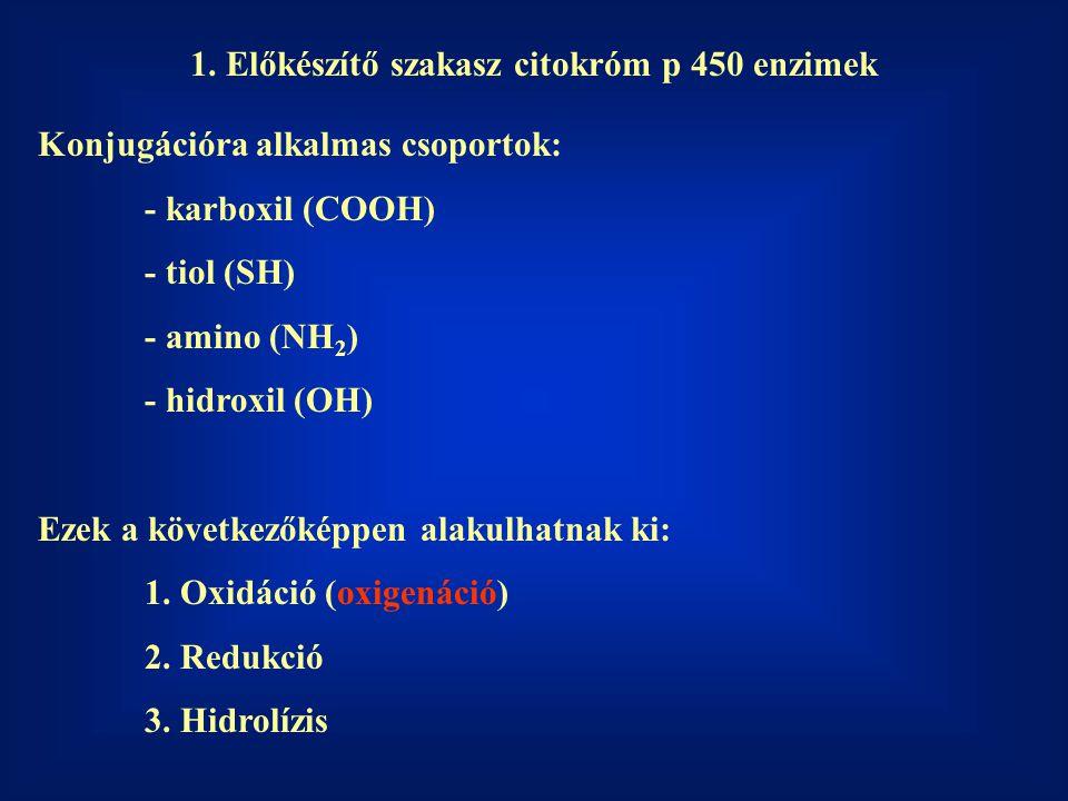 1. Előkészítő szakasz citokróm p 450 enzimek