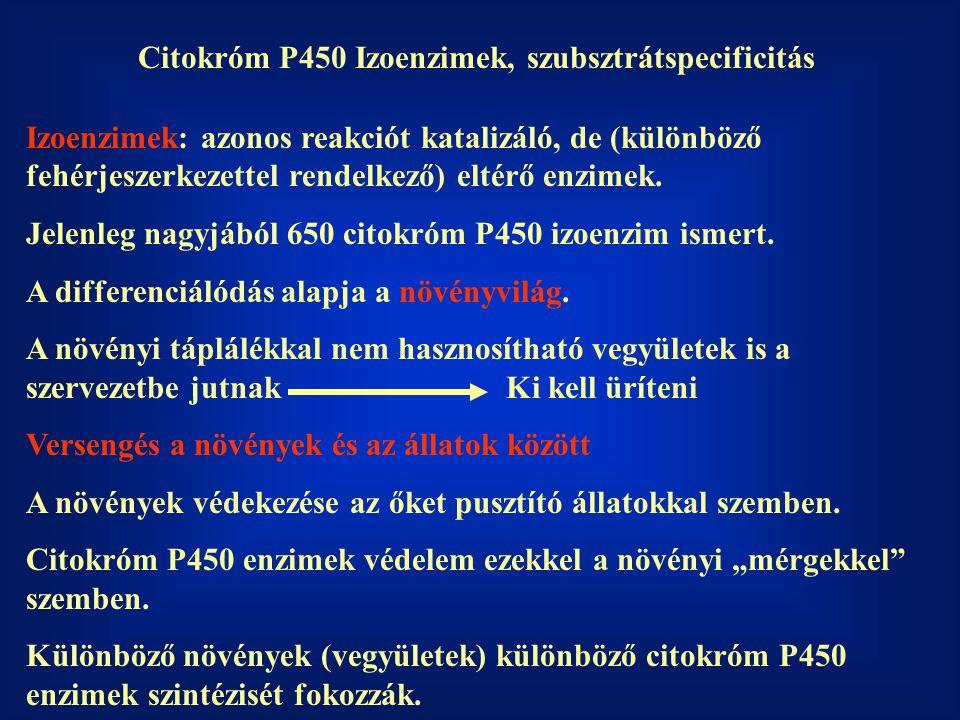 Citokróm P450 Izoenzimek, szubsztrátspecificitás