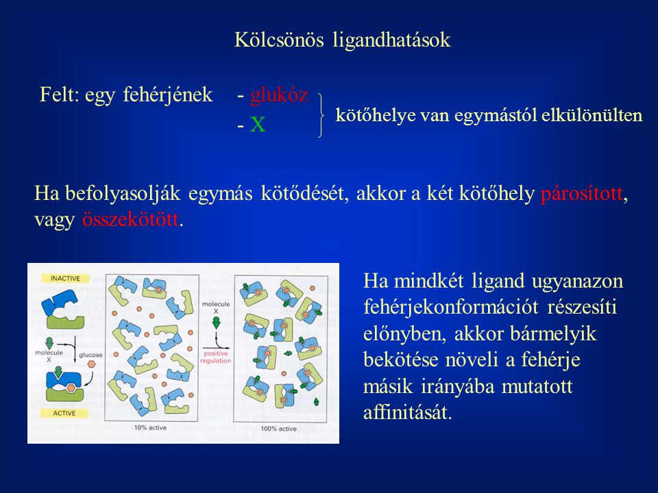 Kölcsönös ligandhatások